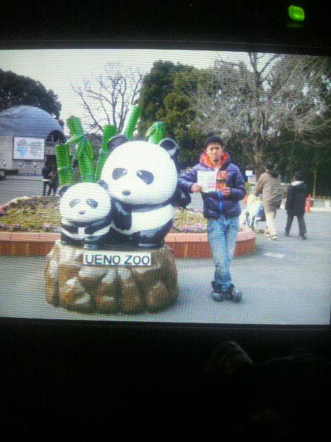 レノマNo.80 <br />  上野zoo(^^)d